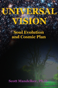 Universal vision: Soul Evolution & Cosmic Plan